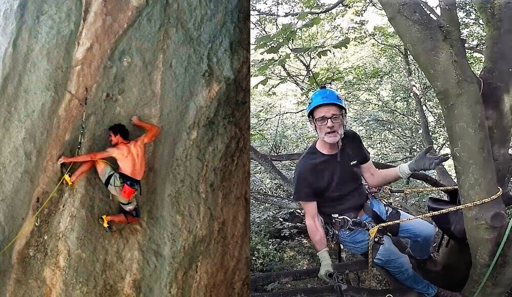 Differences between rock climbing and tree climbing.